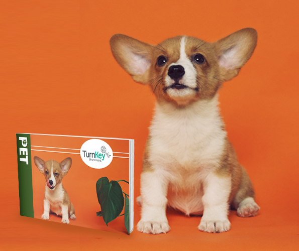 Pet Branded Merchandise Catalogue